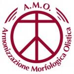 A.M.O. Armonizzazione Morfologica Olistica